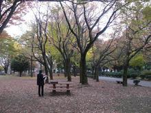 わかぐさ公園