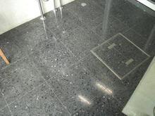 東京大学総合博物館小石川分館 1階多目的トイレ