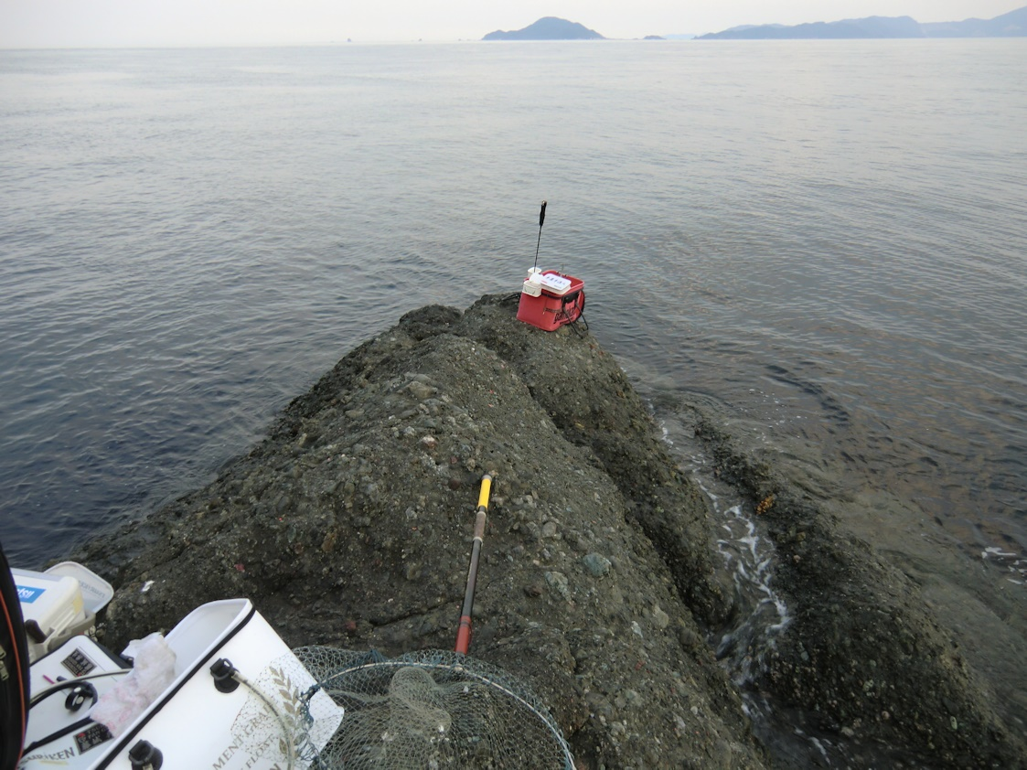 半農半漁人 無垢島のアジ釣り