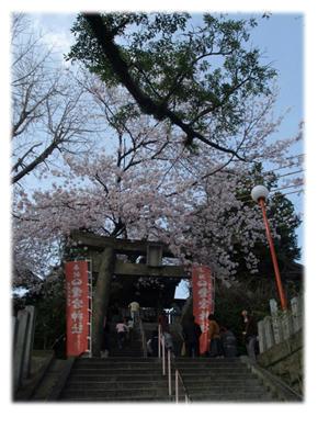 愛宕神社桜まつり