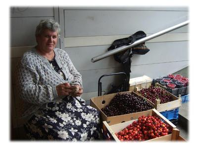 果物売りのおばちゃん
