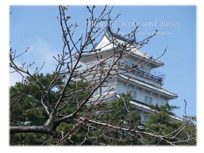 桜と島原城