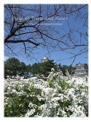 花と島原城