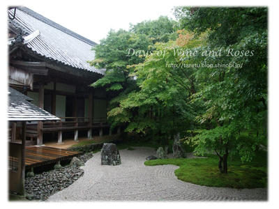 雨の光明禅寺