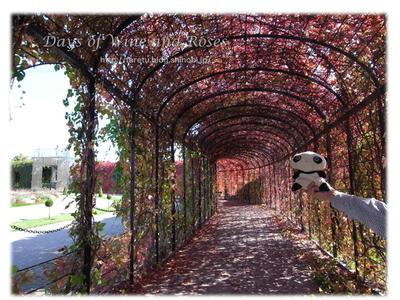 皇太子の庭3