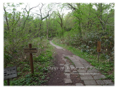 戸隠森林植物園2