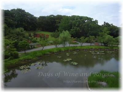 石橋美術館室内から見る公園