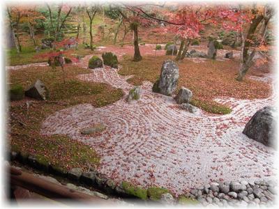 石庭と落ち葉