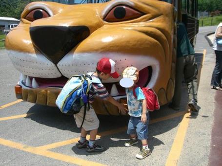 lionbus.jpg