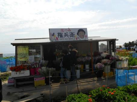 chikura03.jpg