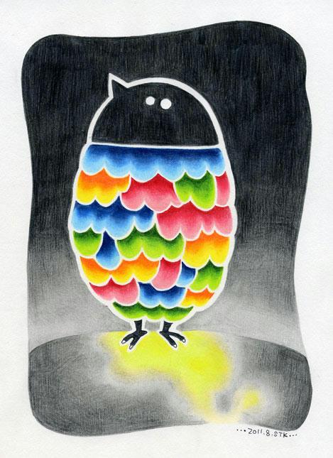 2011.8鳥