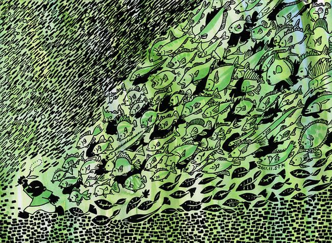2011.11森魚