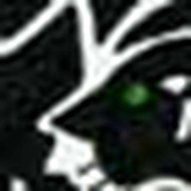 猫盛り06