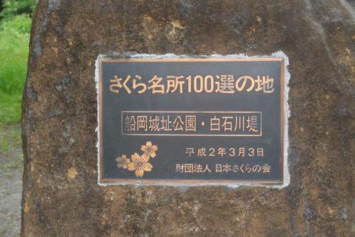 P1000413.jpg