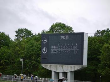 201106255f.jpg