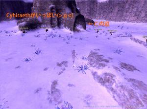 20100322Cyhiraeth.jpg