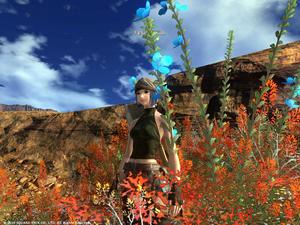 20100905PC-Sesami-Kan.jpg