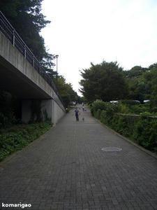 f1183c51.jpeg