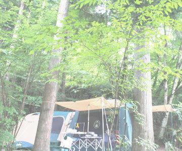camp-aa.jpg
