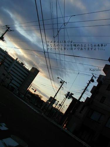 038d0f42.jpg
