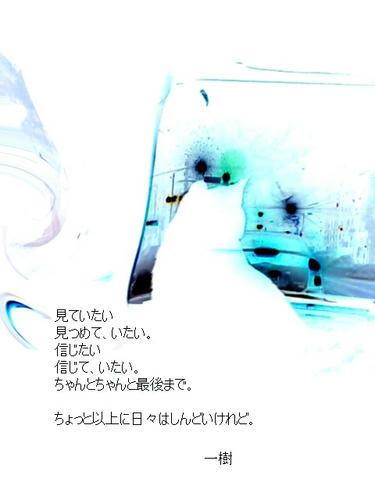20110131.jpg