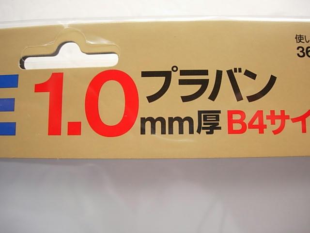 DSCN0554.JPG