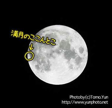 yun_1531.jpg