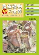 bug-eater_color45.jpg