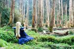 <br />[Forest of oblivion]