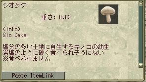201203013k.jpg