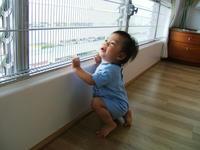 Baby_Proof_3.JPG
