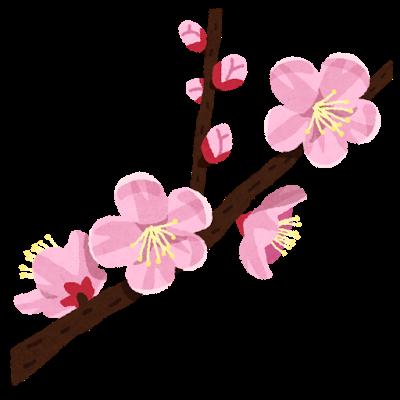 保育士のための恋愛講座。USPが異性を引き寄せる鍵! 花の命