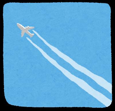 母親と距離を取る保育士が乗る飛行機