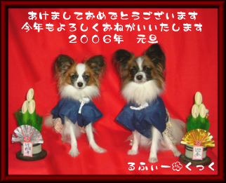 20060101-1.png