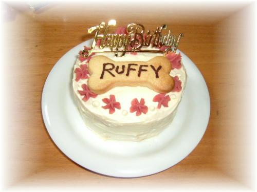cake411.jpg