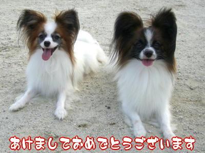 2007_1_2.jpg