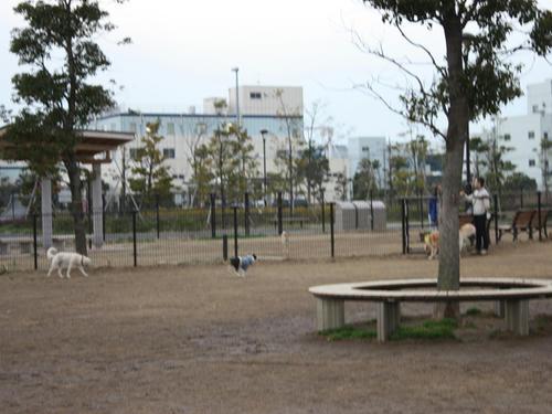 20090310_jonanjima_shio30.jpg
