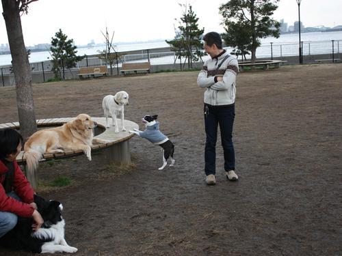 20090310_jonanjima_shio25.jpg