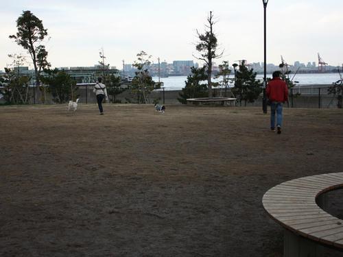 20090310_jonanjima_shio23.jpg