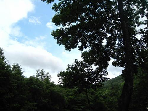 20090718_ozeCamp01.jpg