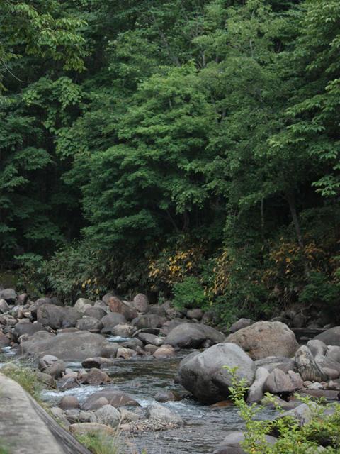 20090719_ozeCamp06.jpg
