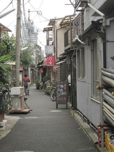 20091024_yanesen70.jpg