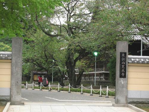 20091024_yanesen53.jpg