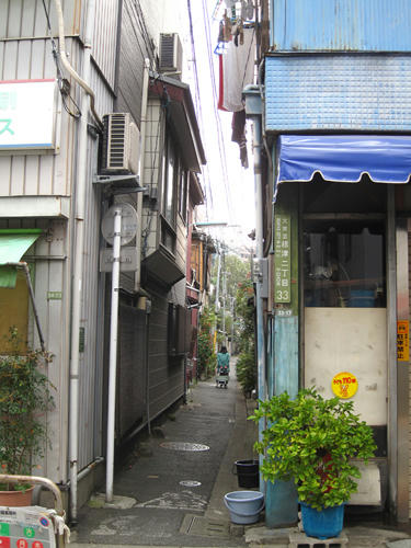 20091024_yanesen19.jpg