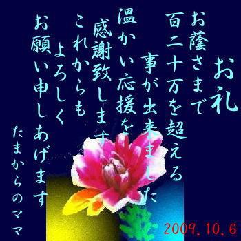 b986a5b9.jpg