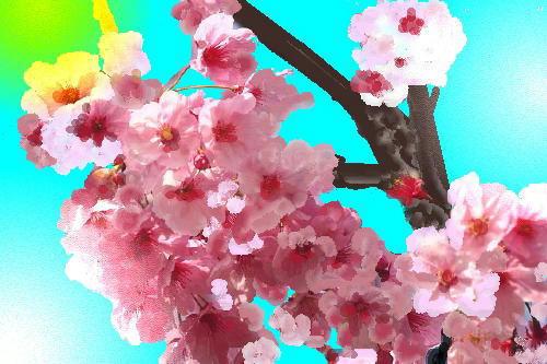 i-ha4-daisen-d.jpg