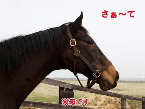 100505_01.jpg