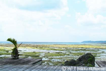 亜門邸から見える風景