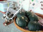 沖縄かぼちゃ