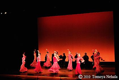 Flamenco プブリカシオンNo.14